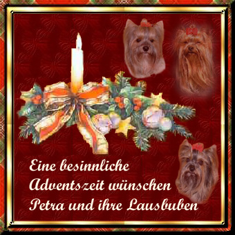 An den Beitrag angehängtes Bild: http://www.meine-lausbuben.de/extras/advent2007.jpg