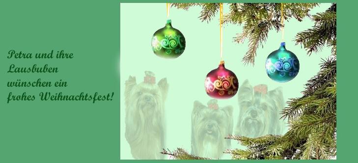 An den Beitrag angehängtes Bild: http://www.meine-lausbuben.de/extras/xmas-card-2007.jpg