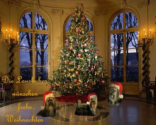 An den Beitrag angehängtes Bild: http://www.meine-lausbuben.de/extras/xmas2011.jpg